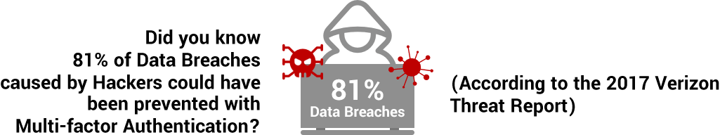Data Branches